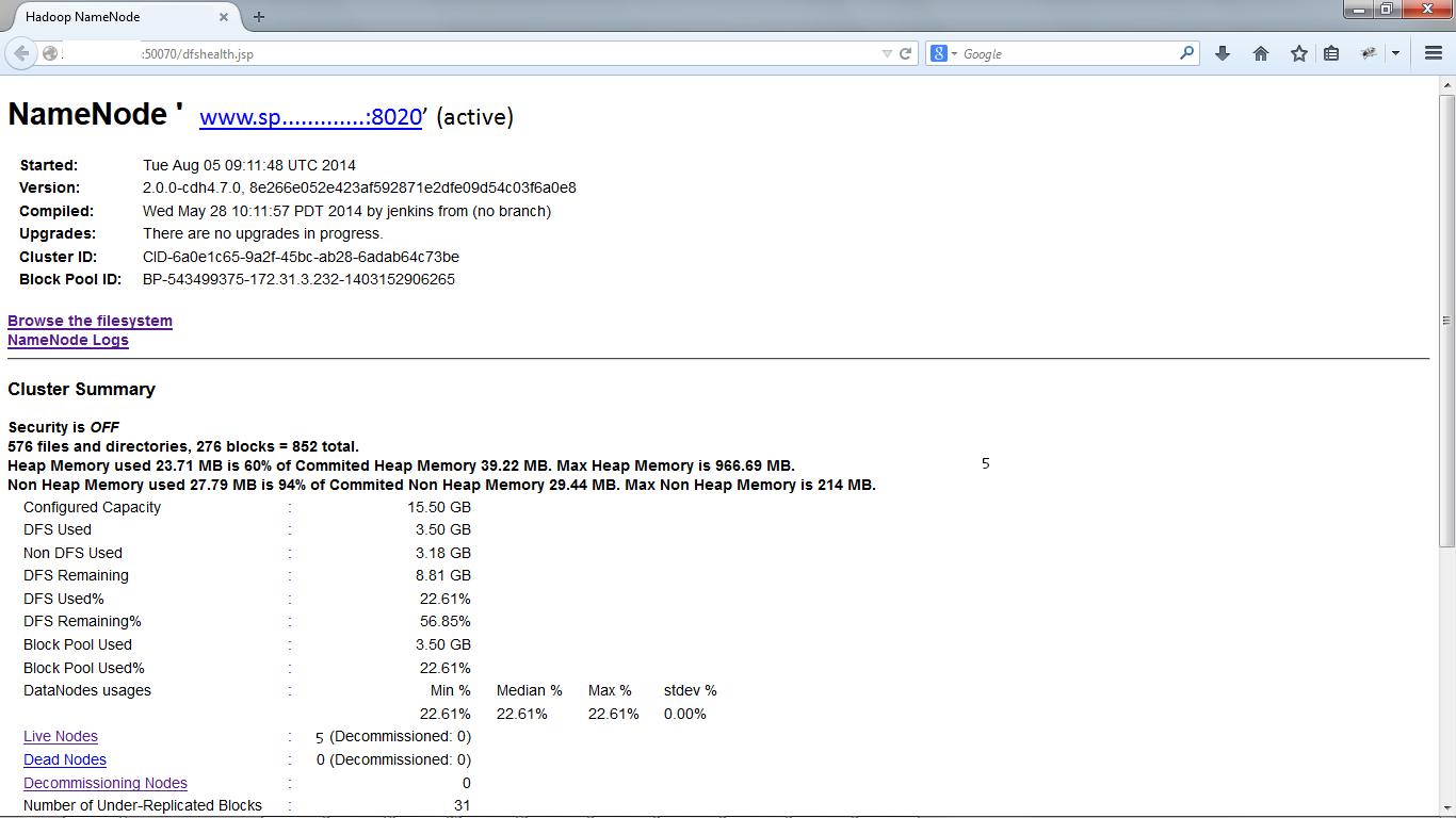 HDFS Web Interface Diagram