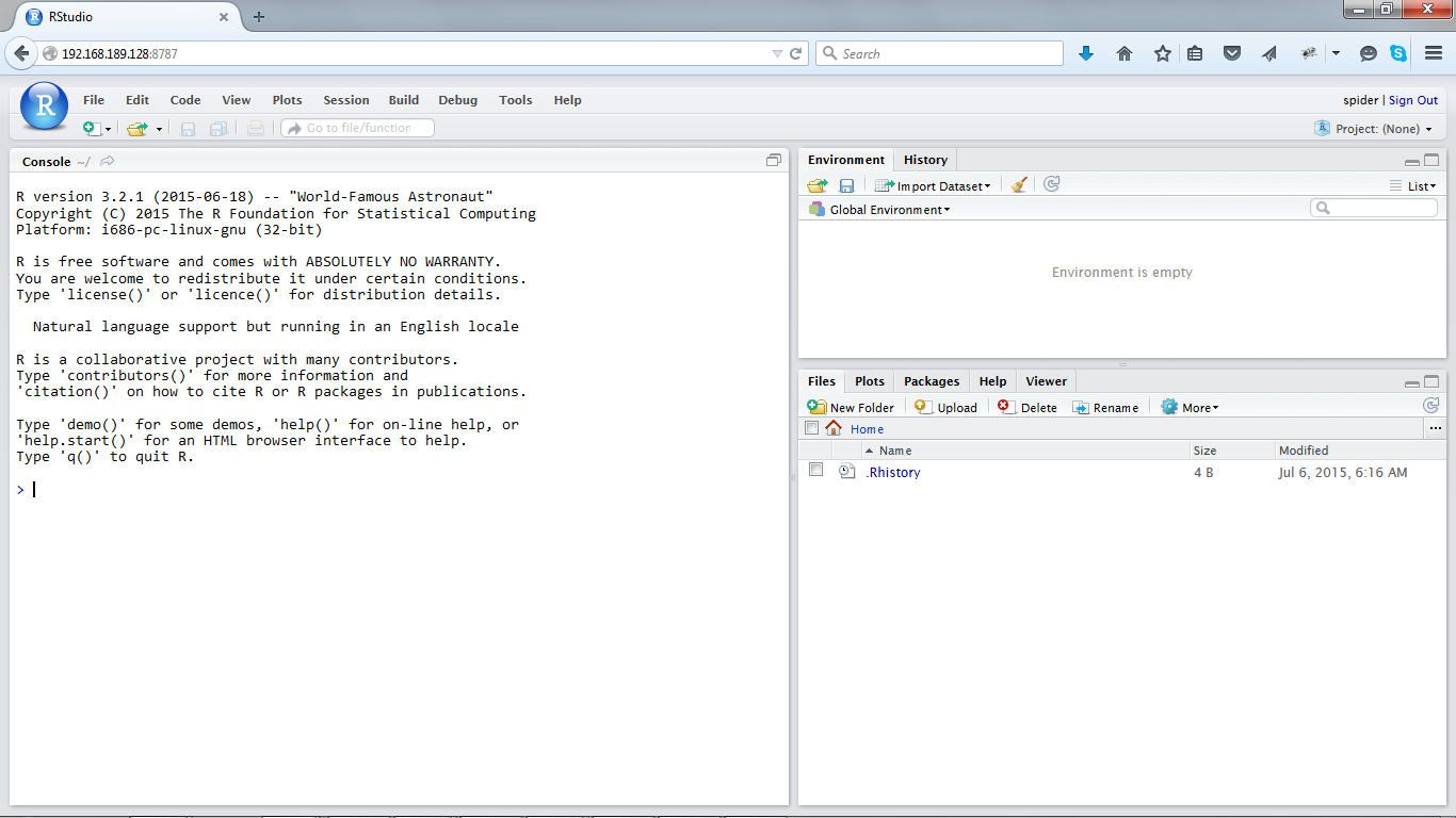 Rstudio initial screen